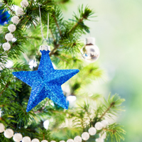 Êtes-vous un sapin de Noël ?